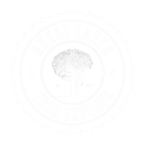 Great Lakes Tree Experts Logo